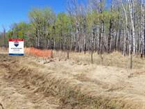 Homes for Sale in Cold Lake, Alberta $44,900