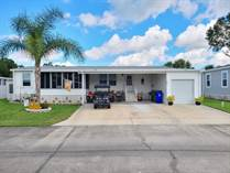 Homes for Sale in Ariana Village, Lakeland, Florida $89,900