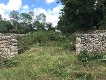 Lots and Land for Sale in Motul, Yucatan $6,900