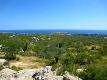Lots and Land for Sale in El Tezal, Cabo San Lucas, Baja California Sur $5,370,210