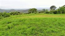 Homes for Sale in Tres Rios, Puntarenas $50,000