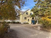 Homes for Sale in LeRoy, Saskatchewan $549,000