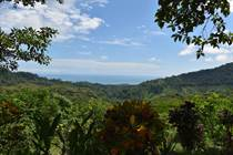 Lots and Land for Sale in La Mina, Lagunas, Puntarenas $729,000