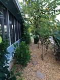 Homes for Sale in Honeymoon MHP, Dunedin, Florida $98,000