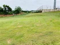 Lots and Land for Sale in BO PUENTE, Camuy, Puerto Rico $45,000