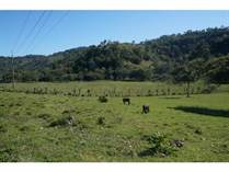 Lots and Land for Sale in Sosua, Puerto Plata $115,000