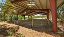Homes for Sale in Smartsville, California $1,200,000