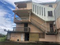 Homes for Sale in Bo. Borinquen, Caguas, Puerto Rico $500,000