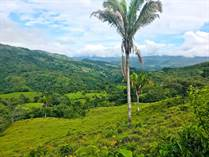 Farms and Acreages for Sale in Palmar Norte, Paso Real, Puntarenas $449,000
