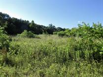 Lots and Land for Sale in Fairfield, Texas $147,875