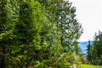 Lots and Land for Sale in Anglemont, British Columbia $29,000
