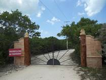 Lots and Land for Sale in Sisal, Yucatan $100,000