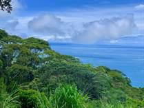 Lots and Land for Sale in Escaleras , Dominical, Puntarenas $199,000