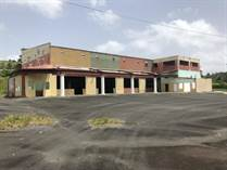 Commercial Real Estate for Rent/Lease in Bo. Beatriz de Cidra, Cidra, Puerto Rico $0 one year