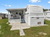 Homes for Sale in Zephyrhills South, Zephyrhills, Florida $15,000