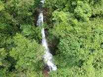 Farms and Acreages for Sale in San Salvador , La Florida, Puntarenas $250,000
