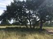 Lots and Land Sold in Vintage Oaks, New Braunfels, Texas $78,000