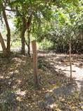 Lots and Land for Sale in Lo De Marcos, Nayarit $3,500