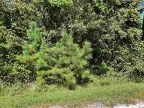 Lots and Land for Sale in Hemingway, South Carolina $15,800