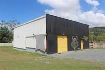 Commercial Real Estate for Sale in Bo. Guatemala, San Sebastian, Puerto Rico $199,000
