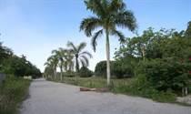 Lots and Land for Sale in Bavaro, La Altagracia $174,800