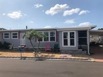 Homes for Sale in Causway Village, South Pasadena, Florida $84,000