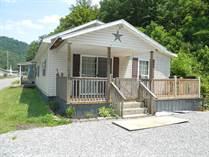 Homes for Sale in Williamson, West Virginia $78,000