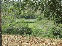 Lots and Land for Sale in Dominical, Puntarenas $971,000