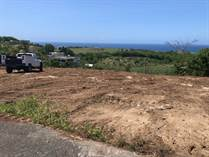 Lots and Land for Sale in Membrillo, Camuy, Puerto Rico $105,000