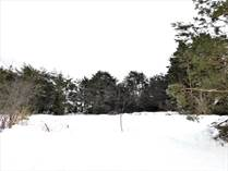 Lots and Land for Sale in Wausau, Wisconsin $80,000