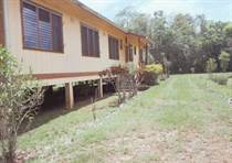 Farms and Acreages for Sale in Belmopan, Cayo $350,000