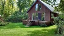 Homes for Sale in Minnesota, East Side Twp, Minnesota $149,500