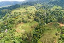 Farms and Acreages for Sale in Tinamastes, Puntarenas $269,000