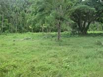 Lots and Land for Sale in Abreu , Maria Trinidad Sanchez $37,000