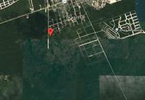 Lots and Land for Sale in Region 15, Tulum, Quintana Roo $55,000