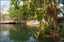 Farms and Acreages Sold in Dzinzantun, Dzilam de Gonzalez, Yucatan $910,000