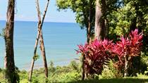 Farms and Acreages for Sale in Dominicalito, Puntarenas $1,250,000