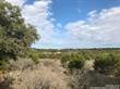Lots and Land for Sale in Spring Branch, Texas $89,900