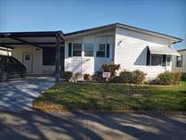 Homes for Sale in The Meadows at Country Wood, Plant City, Florida $24,900
