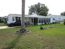 Homes for Sale in Brookridge, Brooksville, Florida $137,500
