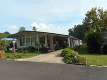 Homes for Sale in Featherock, Valrico, Florida $38,000