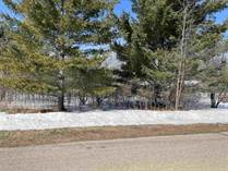 Lots and Land for Sale in Gladwin, Michigan $6,000