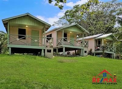 # 4039 - Unique Resort-Type Property on 11 Acres of Manicured Grounds  - near San Ignacio Town