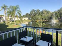 Homes for Sale in Village of Tampa, Tampa, Florida $49,900