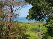 Lots and Land for Sale in Puntarenas, Tarcoles, Puntarenas $59,000