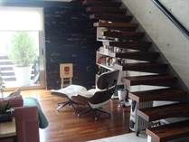 Condos for Rent/Lease in Polanco, Mexico City, Distrito Federal $4,000 monthly