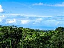 Lots and Land for Sale in Ojochal, Puntarenas $85,000