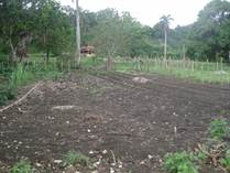 Lots and Land for Sale in Abreu , Maria Trinidad Sanchez $25,000