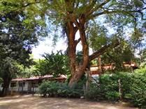 Homes for Sale in Hernandez, Guanacaste $290,000