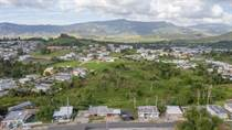Lots and Land for Sale in BO. QUEBRADA ARENAS, Las Piedras, Puerto Rico $425,000